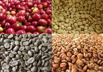 cafe-graos-cereja-despolpado-beneficiado