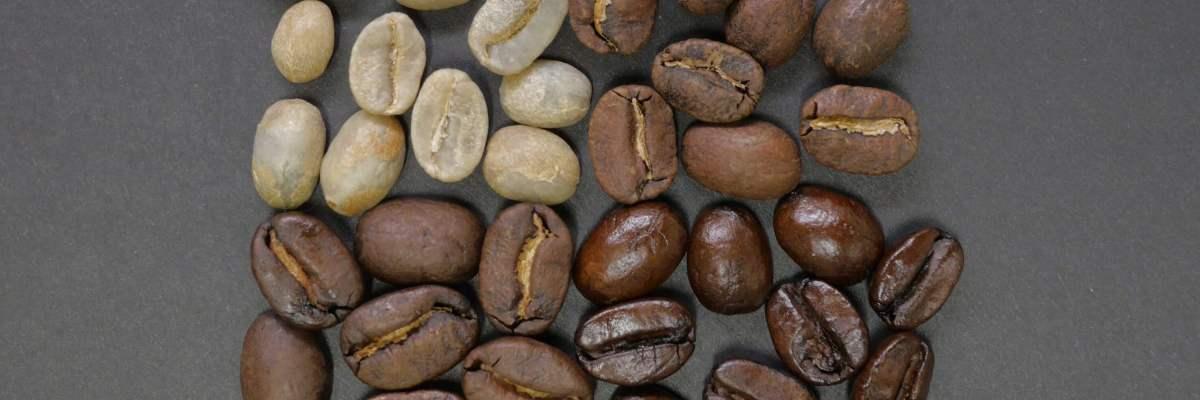 classificacao-do-cafe-tipo-bebida-e-peneira