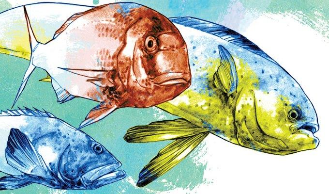 peixe-bom-pro-coracao-cerebro