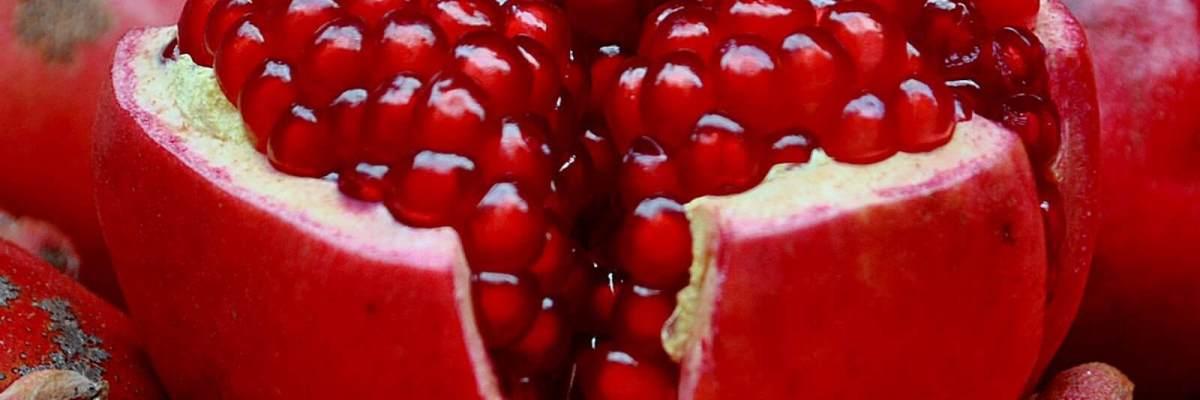 roma-a-nova-fruta-medicinal