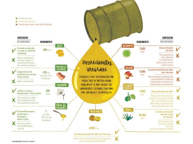 biodisel-materia-prima-produtividade