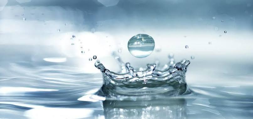 Cura Pela Agua de Luis Kuhne